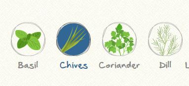 Herbs Producer